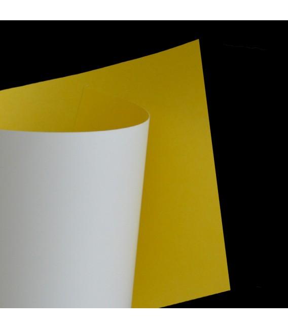 H-67 Biało - Żółty