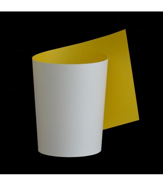 Papel wall lamp